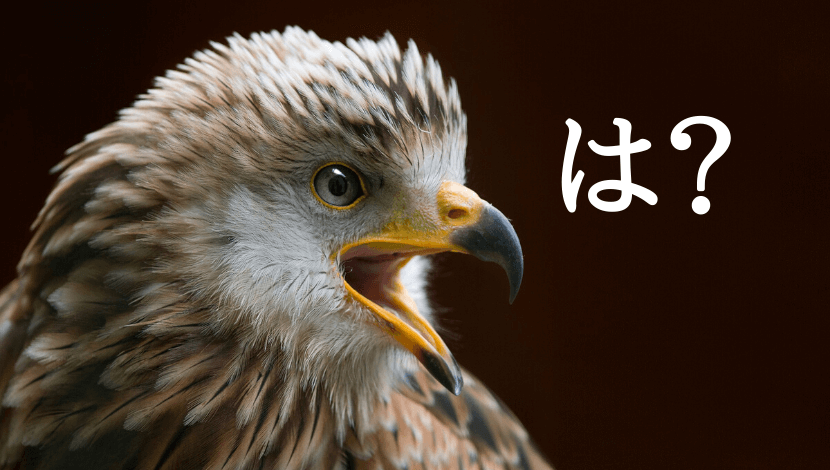キレている鳥
